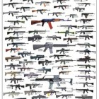 Assault Rifles & Carbines Poster