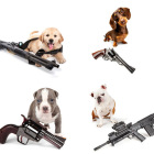 Puppies With Guns 2015 Calendar