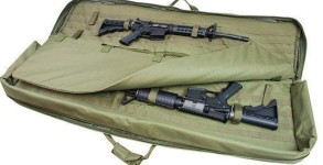 discreet-double-rifle-bag